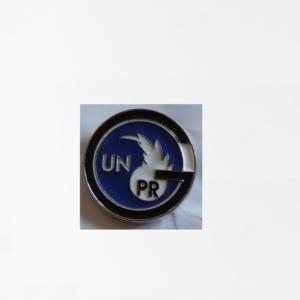 Pins_nouveau_modele_unprg
